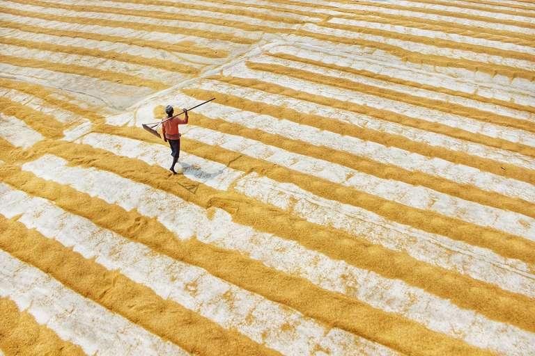 Walk on the yellow stripe